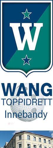 Wang toppidrett